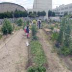 菜園教室・環境学習(令和2年度【第1回】)を開催しました【大阪府茨木市】